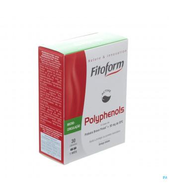 POLYPHENOLS BIOHOLISTIC 30 GELL3131042-31