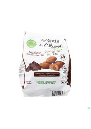 Celiane Cakeje Hart Chocolade Glutenvrij 210g 45792661700-20