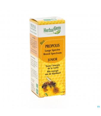 Herbalgem Propolis Junior Large Spec.bio Gutt 15ml3062486-31