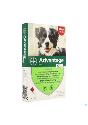 Advantage 250 Chiens 10<25kg 4x2,5ml1357243-20