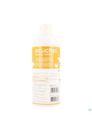 Ecuchol Solution Oral 500ml1553189-20