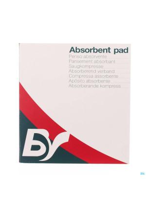 Dinapad Adp 20x30cm 30 Compresse Sterile N/adh1690965-20