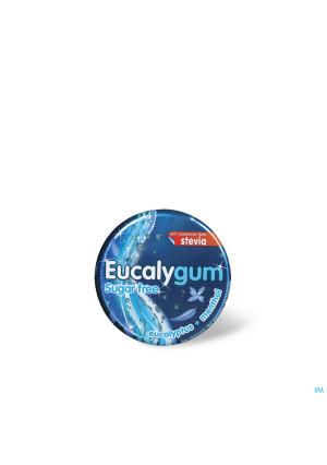Eucalygum Gomme Pectorale A Sucer Sans Sucre 40g2124808-20