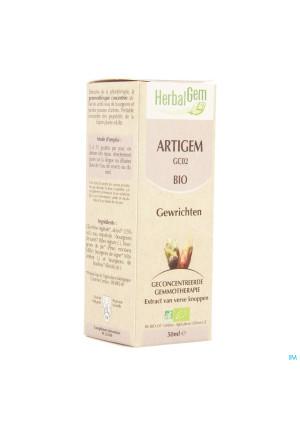 Herbalgem Artigem Complex 50ml2187599-20
