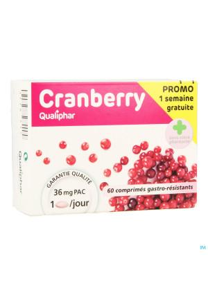 Cranberry Qualiphar Comp Pell 60 Promo3460615-20
