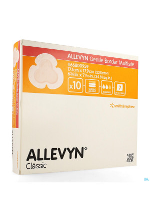 Allevyn Ag Pans Adhesive Silic. 17,5x17,5cm 103686821-20