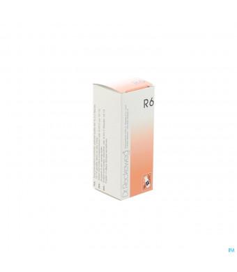 Reckeweg Dr. R 6 Gutt 50ml1561315-31