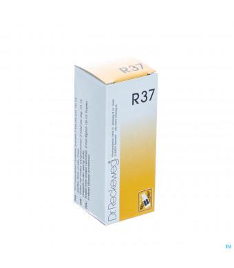 Reckeweg Dr. R37 Gutt 50ml1561679-32