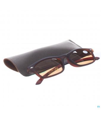 Sunreader Zonneleesbril +3.00 Brown3016870-31