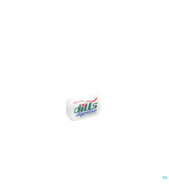 Dills Ginger and Lime Mints Z/suiker 15g3035086-31