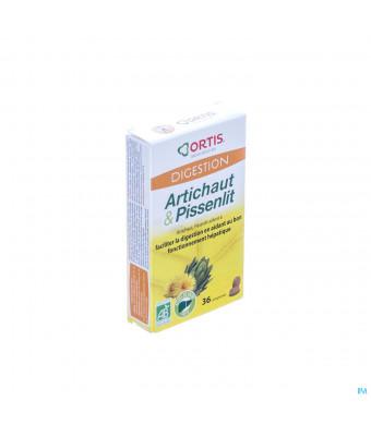 Ortis Artisjok-paardebloem Bio Comp 2x183040755-30