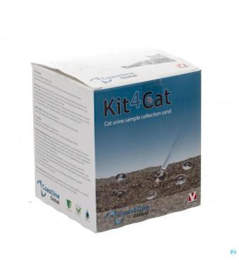 Kit4kat Sachet 1x300g3044773-31