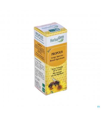 Herbalgem Propolis Breed Spectrum Bio Gutt 15ml3062460-31