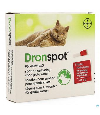 Dronspot 96mg/24mg Spot-on Kat Groot >5-8kg Pip 24131835-31