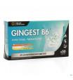 Gingest B6 Comp 303945912-01